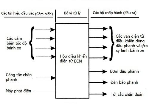 cấu tạo về hệ thống ABS